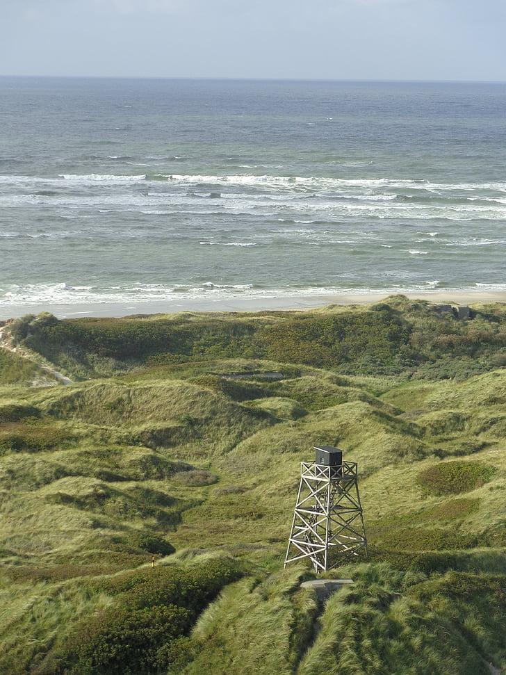 platja, l'aigua, Dinamarca, Mar, passeig marítim