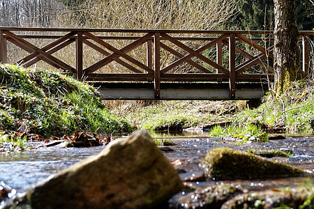 bach, water, forest, black forest, bridge, nature, landscape