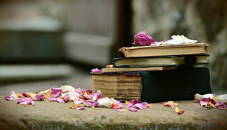llibres, llibres antics, antiquariat, utilitzat, llibres usats, antiquari, literatura