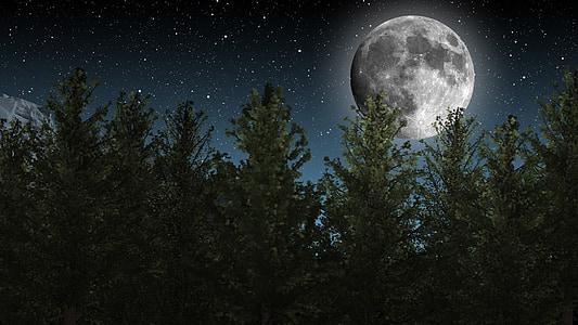 mesiac, Nočná obloha, hviezdy, stromy, Príroda, Astronómia, Star - priestor