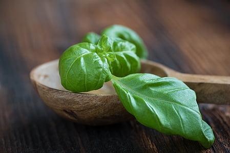 basilic, vert, Frisch, feuille de basilic, en bonne santé, manger, alimentaire