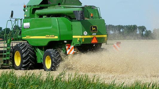 collita, gra, combinar, l'agricultura conreables