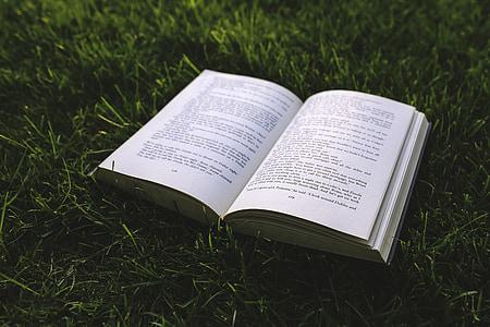 kniha, tráva, Zelená, Príroda, listy, stránky