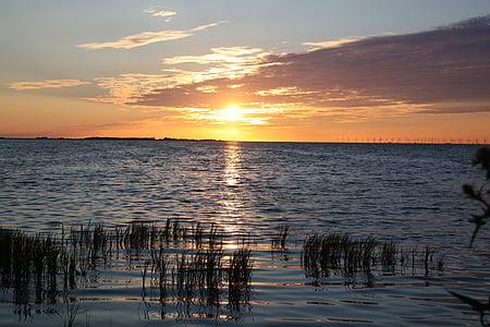 태양, 일몰, 바다, 구름, 스카이, abendstimmung, 석양