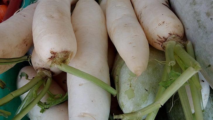 radijs, groenten, vers, voedsel, Vegetarisch, organische