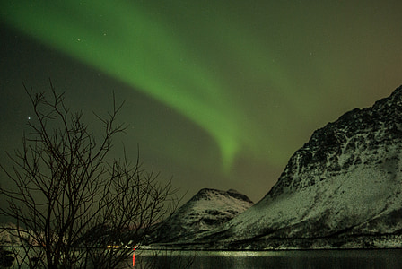 Norge, Lappland, Aurora borealis, stjärnigt, polarnatten, fjorden