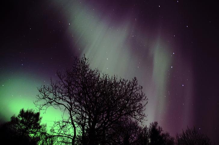 đèn phía bắc, Aurora polaris, Na Uy