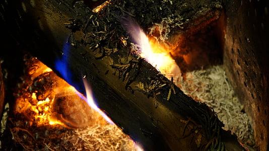 foc, calenta, flama, cremar, brases, calor, que brilla