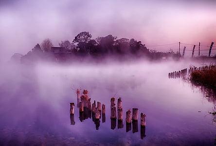 Giappone, Kumamoto, isola galleggiante, nebbia, Lago, mattina, natura