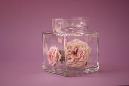 flor, Rosa, bodegons, primavera