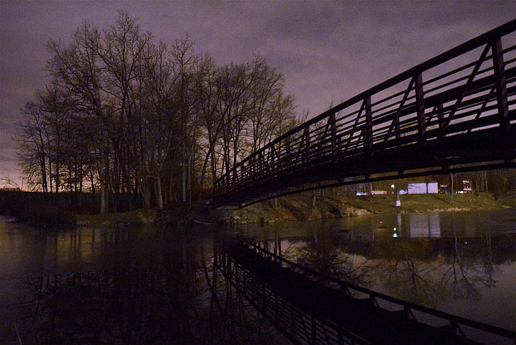 ice, pond, reflection, night, bridge, trees, park