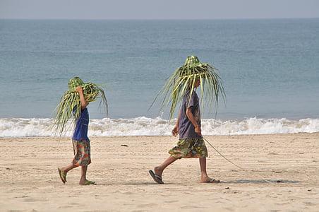 plage, chapeaux, chapeau, mer, été, eau, sable