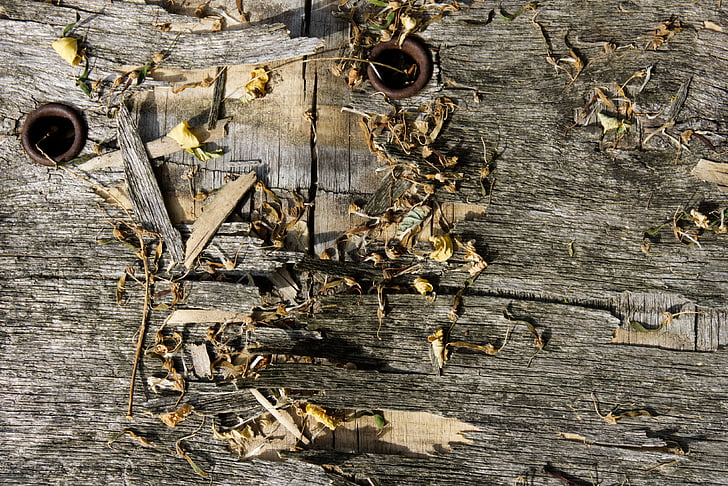 fusta, textura, fusta vella, òxid