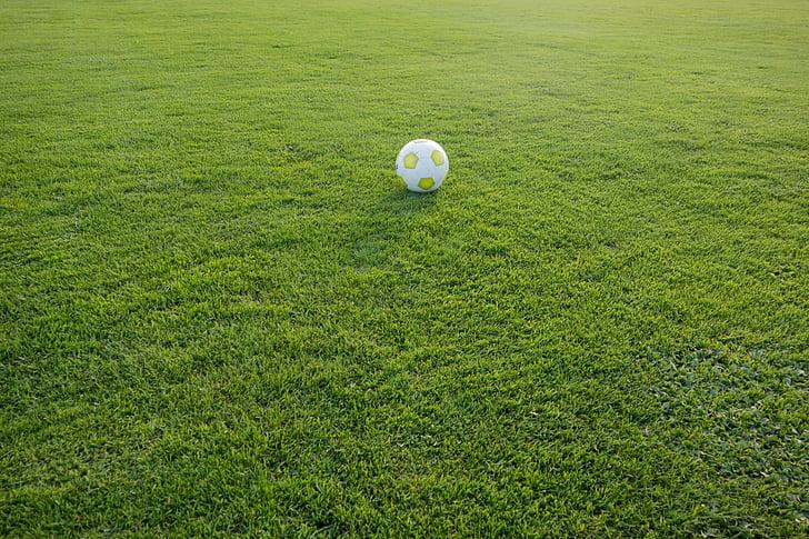 football, sports ground, ball, football pitch, sport, rush, ball sports