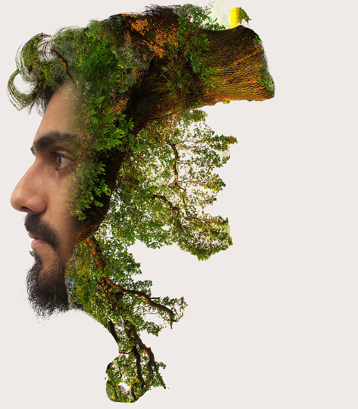 dvojitej expozície, Photoshop, vrstva, strom, Príroda, expozícia, muži