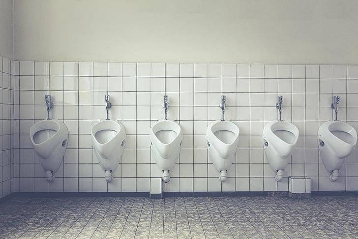 toilet, loo, wc, public toilet, toilet cabin, public, urinal