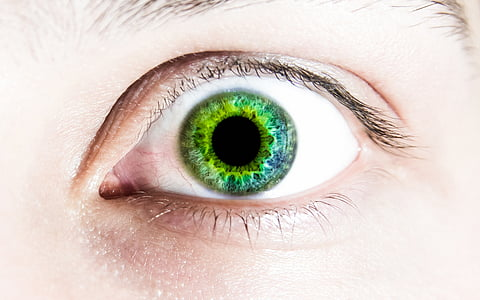 left, eye, green, pupils, face, human eye, human body part