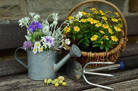 květiny, zahrada, Zátiší, zahradnictví, konev, motyka, léto