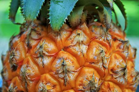 菠萝, 水果, 热带, 健康, 新鲜, 甜, 有机