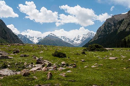 山脉, 高峰, 绿党, 自然, 峡谷, 吉尔吉斯斯坦, 度假