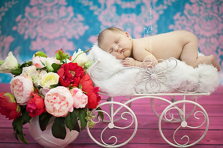 baby, girl, children photographer, nicely, childhood, photo, portrait