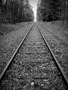 gleise, track bed, seemed, railway tracks, railway rails, threshold, railroad ties