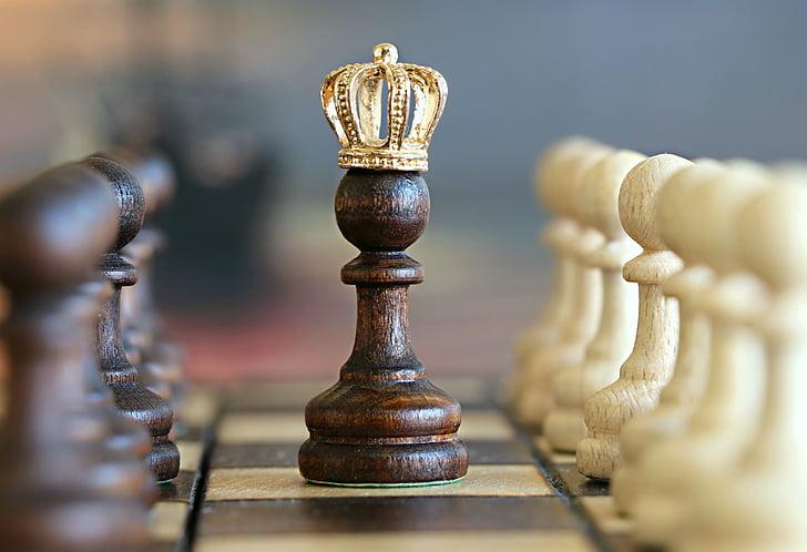 cờ vua, cầm đồ, vua, trò chơi, giải đấu, tình báo, Hãy suy nghĩ
