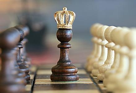 escacs, peó, rei, joc, Torneig, intel·ligència, pensar