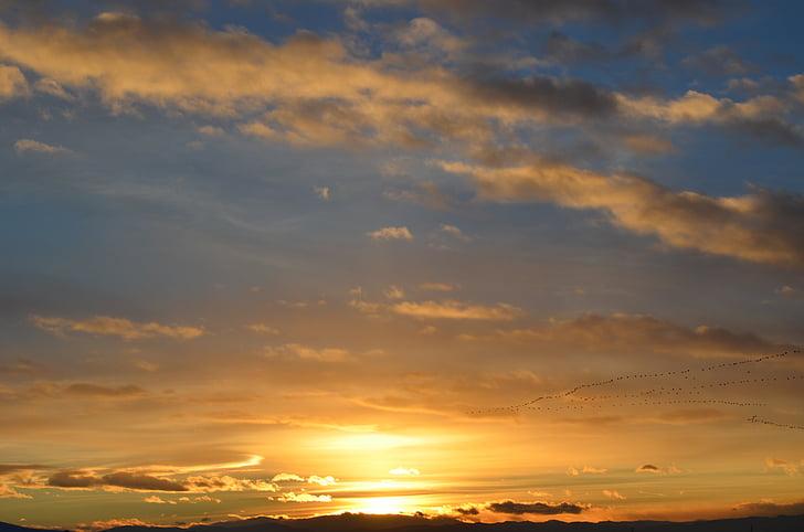 posta de sol, núvols, cel, sol, natura, paisatge, núvols del cel