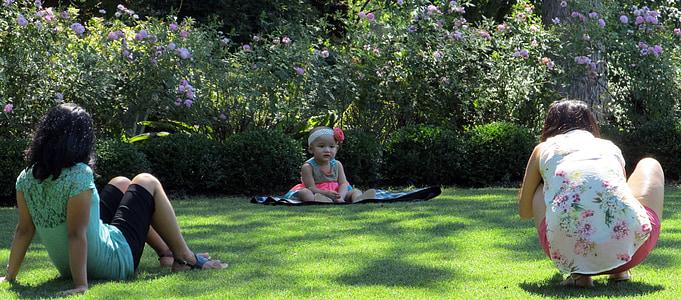 pícnic, nadó, nen, jardí, gespa, valent, mare