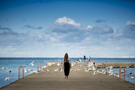 állatok, madarak, felhők, sirályok, óceán, személy, Pier