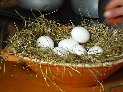 ou, ous de gallina, ous blancs, ous sobre la palla, bol de fang, contenidor, palla