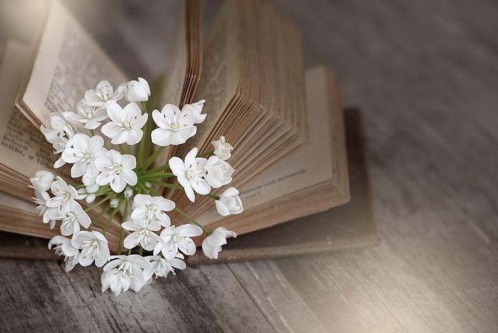 llibre, vell, utilitzat, llibre antic, pàgines del llibre, flor, flors