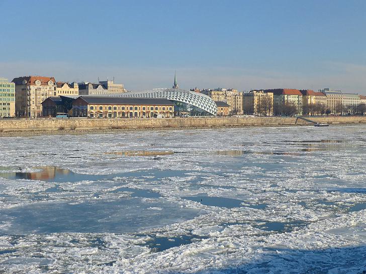 Budapest, Ungern, Donau, Ice, vinter, kalla, Whale
