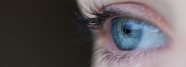 persona, blau, ull, ulls, ull humà, pestanyes, vista