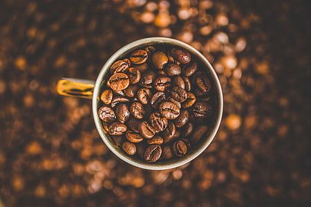 caféine, café, grains de café, Coupe, macro, Mug, grain de café torréfié