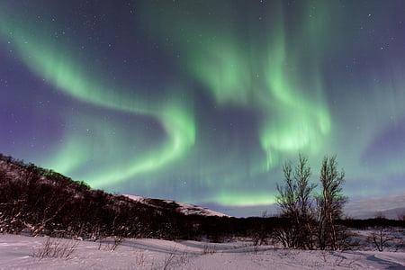 astronomi, Aurora, Aurora australis, lyse, Dusk, aften, landskab