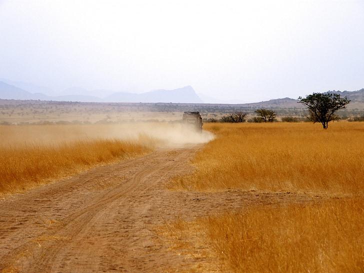 rover gama, veículo, nuvem de poeira, grama, grama amarela, seca, relva seca