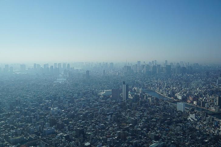 tokyo, city, fog, urban, cityscape, urban Skyline, skyscraper