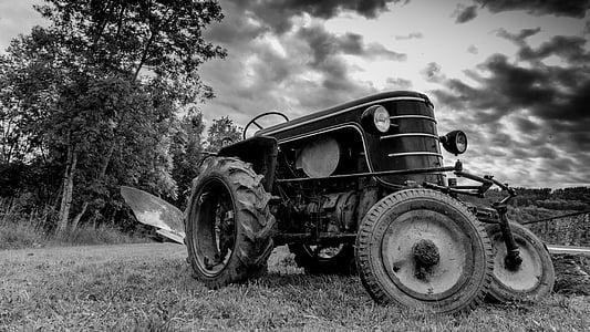 tractor, camp, treballar en els camps