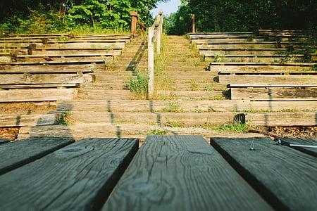dřevo, dřevěný, tabulka, schodiště, zelená, tráva, stromy