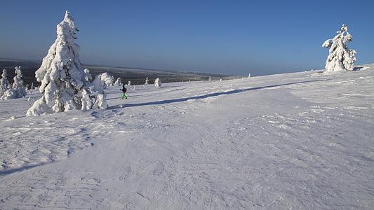 snow shoe snow shoe run, finland, lapland, wintry, winter mood, cold, äkäslompolo