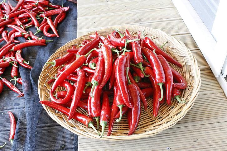 pipar, taimne, korvi, toidu, punane, Spice, värskuse