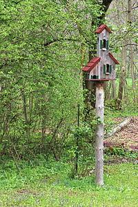 aviary, bird feeder, bird, nesting place, animal welfare, feed, nature