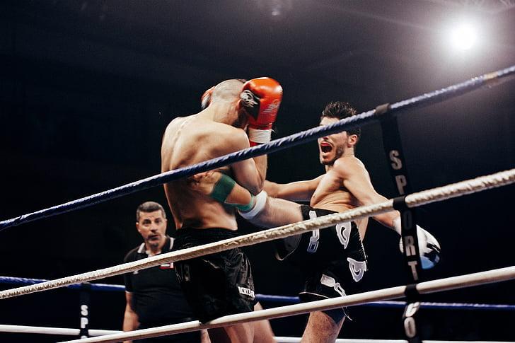 dos, homes, lluita, anell, competència, ring de boxa, boxa - esport
