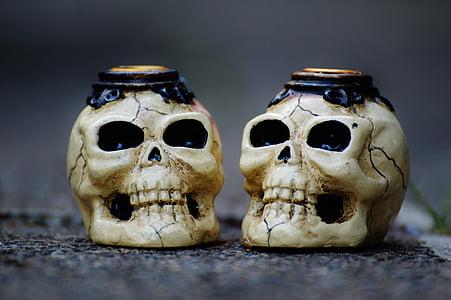 skull and crossbones, creepy, halloween, skull, skull bone, weird, scary