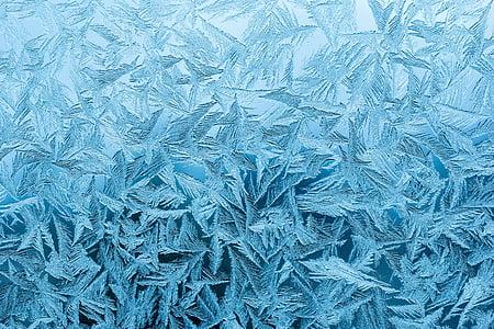 rime, rainy-d flower, frost, frozen, icy, pakkaskukka, frost patterns