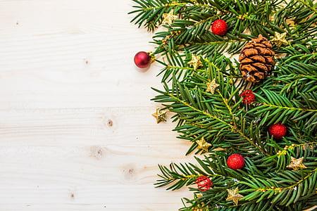 boabe, Filiala, Crăciun, mingi de Crăciun, Crăciun stea, pomul de Crăciun, conifere