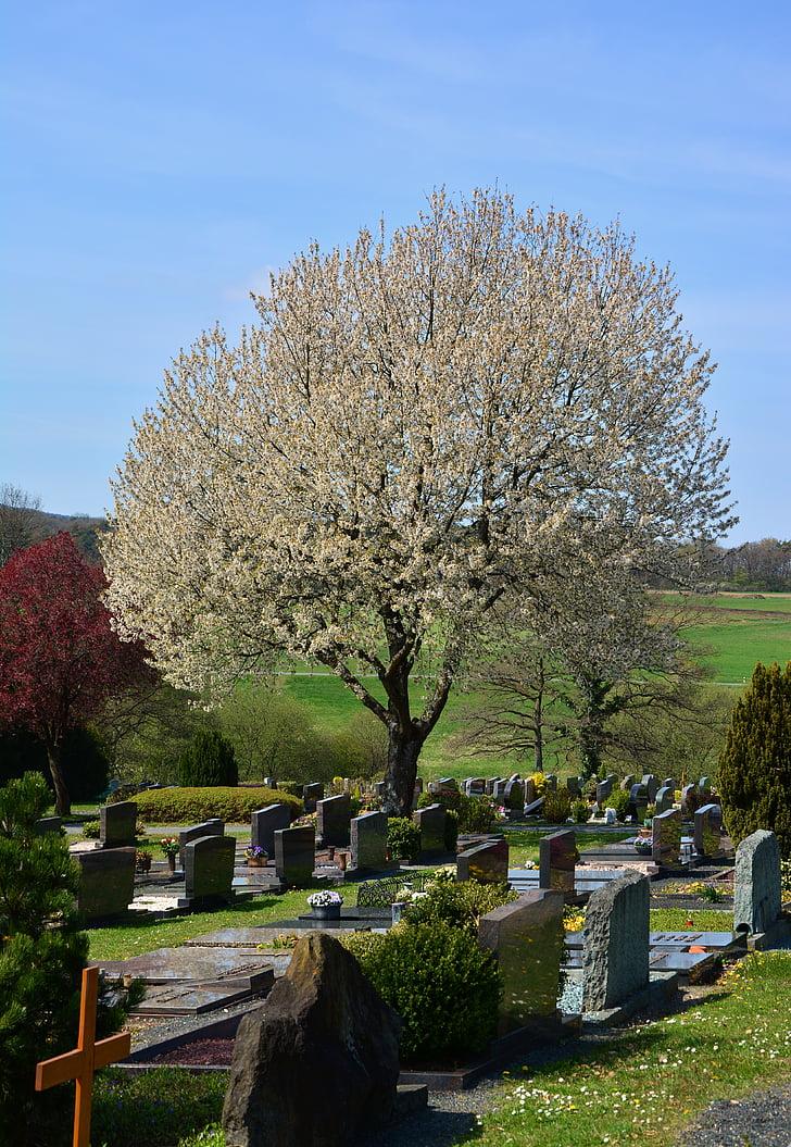 Cementiri, Graves, cultura de cementiri, cura greu, làpida, resta, últim calma