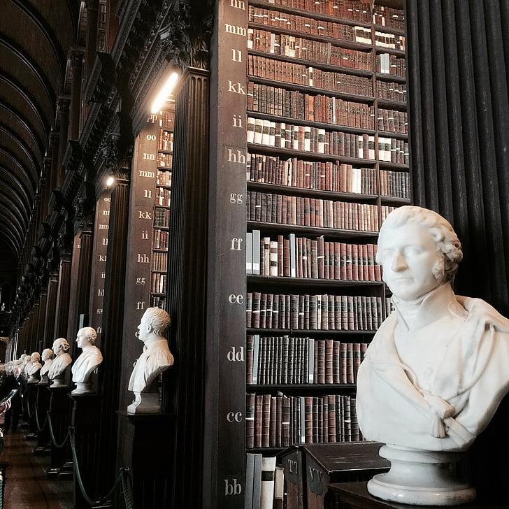 Biblioteca, libri della biblioteca, scaffale per libri, libro, leggere, Università, formazione